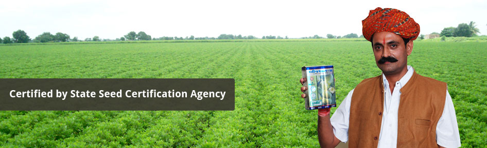Certified By State Seeds Certification Agency